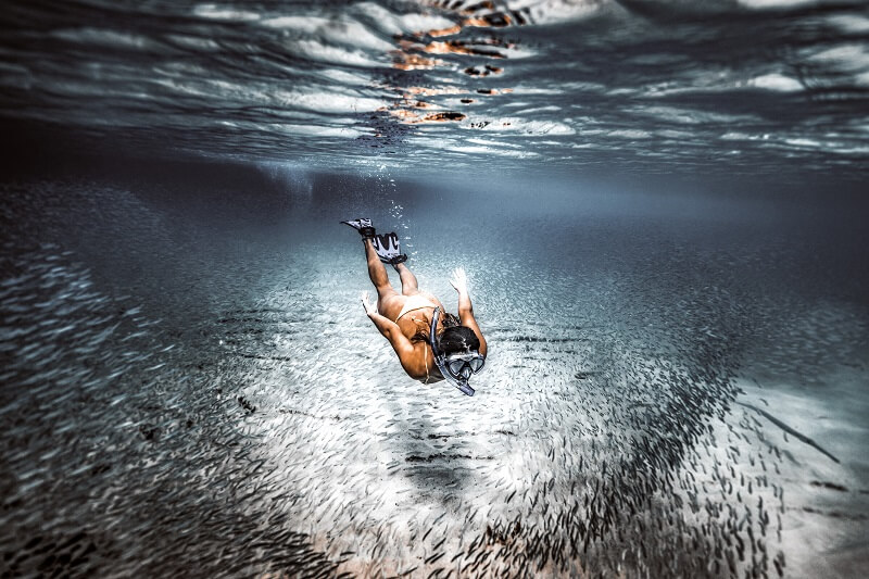 Freediving vs Scuba diving: Which one should you choose?