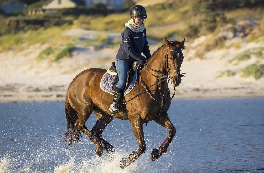 Horse Riding with Sarah Holland 1